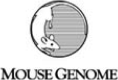 Mouse Genome